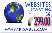 Simple Website Design Bisable.com